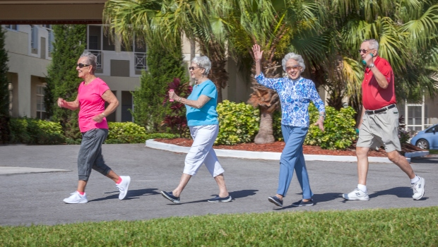 Stratford Palm Harbor - fitness