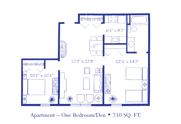 Apartment 1 Bedroom Den