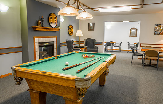 Coventry Village Pool Table