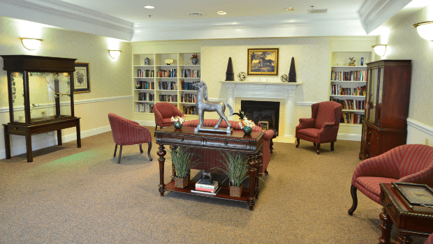 library with books shelves and furniture