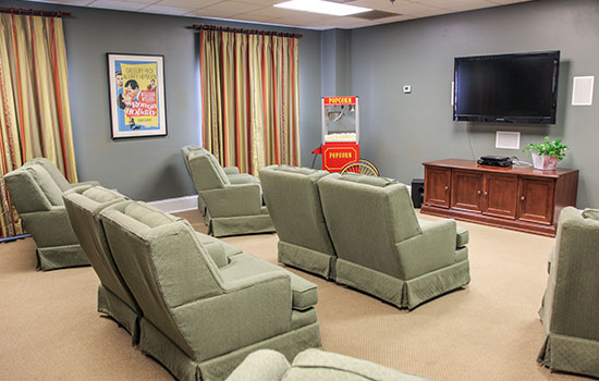 theater room with comfortable chairs
