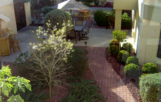 overhead view of the outdoor patio