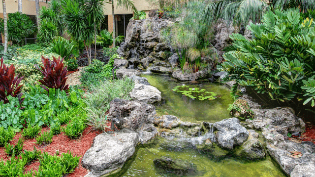 outdoor gardens and small pond