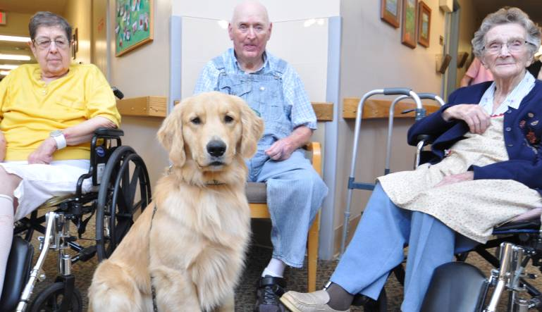 Best Pets for Keeping Seniors Happy and Healthy